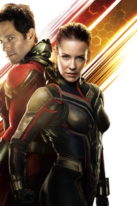 1242x2688 Ant Man And The Wasp Movie 12k