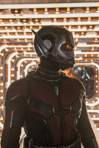 Ant Man And The Wasp Movie 5k