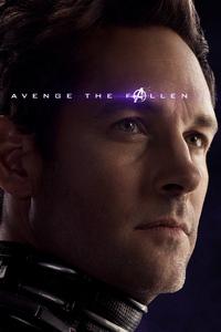 Ant Man Avengers Endgame Poster