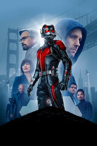 1080x2280 Ant Man Movie 5k