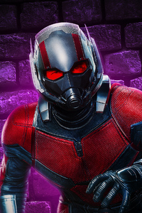 Ant Man New