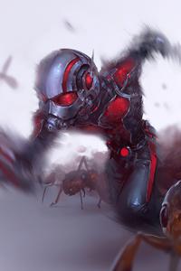 640x960 Ant Man4k