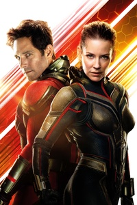 1242x2688 Antman And The Wasp 12k