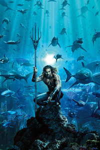 1080x2280 Aquaman Movie Poster 2018