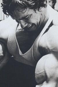 Arnold Schwarzenegger Arms