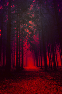 1242x2688 Artistic Red Forest
