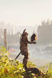 Assassins Creed Odyssey Fields Of 5k
