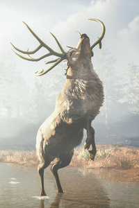 Assassins Creed Odyssey Reindeer 4k