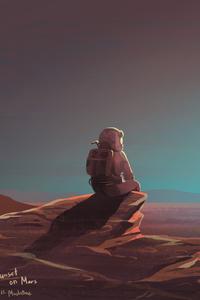Astronaut Watching Sunset On Mars