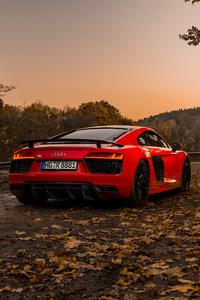 1080x2160 Audi R8 V10 Plus