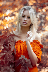 320x480 Autumn Girl Outdoor 4k