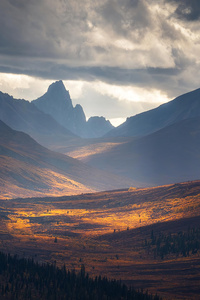 Autumn In The Yukon 4k