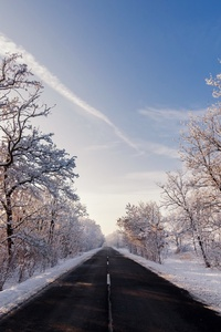 1280x2120 Autumn Winter Road Outdoors