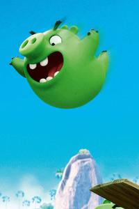 Bad Piggies Angry Birds