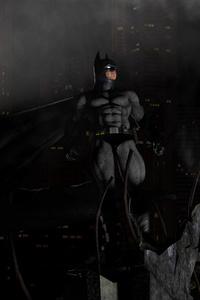 Bat Of Gotham