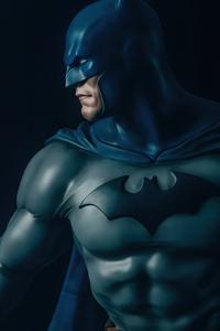 Batman Anatomy 5k
