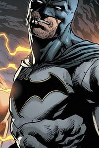Batman And Flash DC Comics