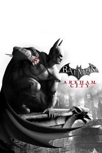Batman Arkham City 5k