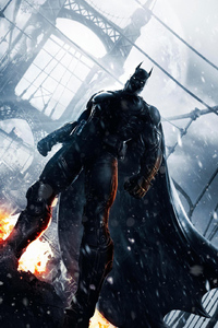 Batman Arkham Origins Arts