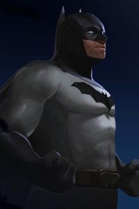 1440x2560 Batman Artwork HD
