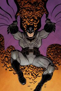 Batman Cape Art