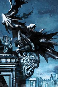 Batman Cape Flying 2020