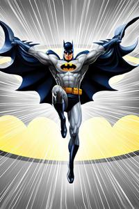 1080x1920 Batman Dc Comic Minimal 5k