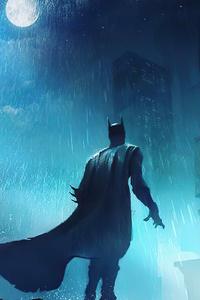 1080x2280 Batman Fighting Crime 4k