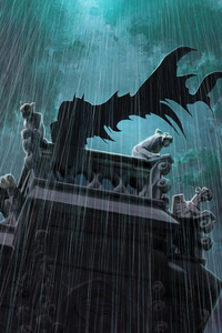 Batman Knight Cape Flying 4k