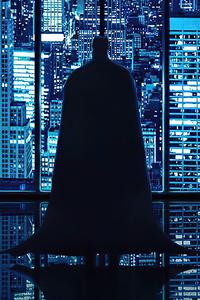 Batman Looking City