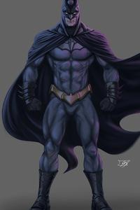 540x960 Batman Strange Day 5k