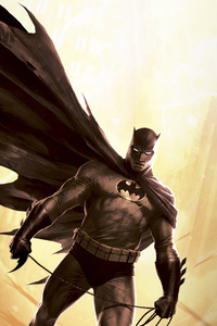 1080x1920 Batman The Dark Knight Returns 4k