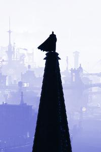 Batman The Ruler