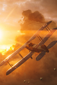 1080x1920 Battlefield 1 Boeing Stearman Model 75