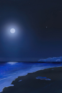 Beach Shooting Stars Moonlight 4k
