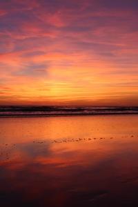 Beach Sunset Evening 4k