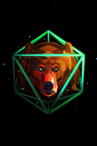 800x1280 Bear Justin Maller 4k