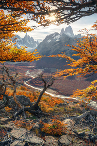 1080x2160 Beautiful Autumn Colours In Patagonia 4k