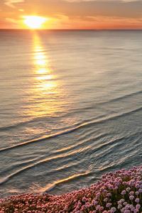 1280x2120 Beautiful Beach Horizon