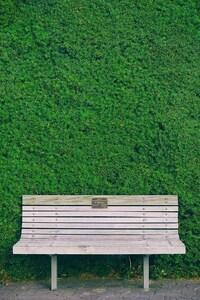 240x400 Beautiful Bench In Garden