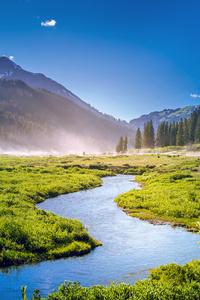 Beautiful Greenery Landscape