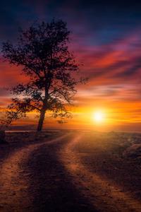 Beautiful Sunset On Dirt Road