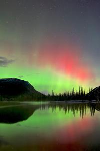 2160x3840 Beauty Of Sky Aurora Bliss