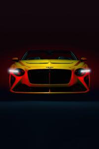 640x1136 Bentley Bacalar 8k