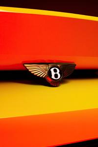 480x854 Bentley Bacalar