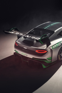 Bentley Continental GT3 2018 Rear