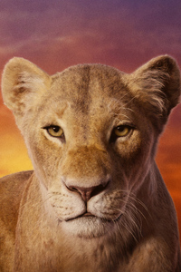 640x1136 Beyonce As Nala The Lion King 2019 4k