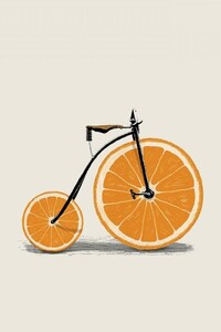 Bicycle Minimalism
