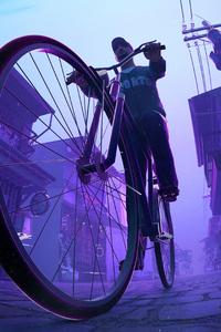 1440x2960 Bicycle Ride 4k