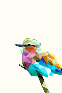 2160x3840 Bird Rainbow Polyart